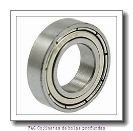 25 mm x 47 mm x 12 mm  FAG S6005-2RSR Cojinetes de bolas profundas