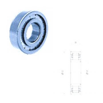 30 mm x 72 mm x 27 mm  Fersa NU2306FM/C3 Rodamientos De Rodillos