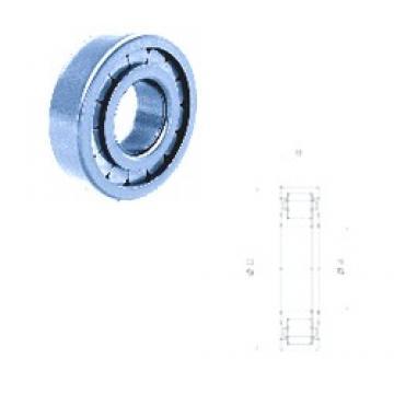 55 mm x 100 mm x 21 mm  Fersa NUP211FM/C3 Rodamientos De Rodillos