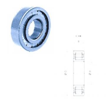 25 mm x 52 mm x 18 mm  Fersa NJ2205FM/C3 Rodamientos De Rodillos