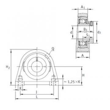 INA PSHE50-N Unidad De Rodamiento