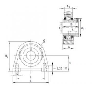 INA TSHE25-N Unidad De Rodamiento