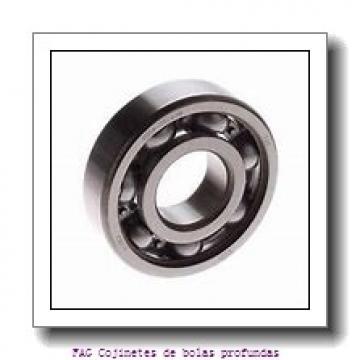 20 mm x 42 mm x 12 mm  FAG S6004-2RSR Cojinetes de bolas profundas